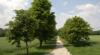 Akademiepark / Foto: Wolfgang Glock - Eigenes Werk (CC BY 3.0)