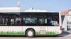 Busverkehr in Wr. Neustadt / Foto: wn24 / Robert Mayer