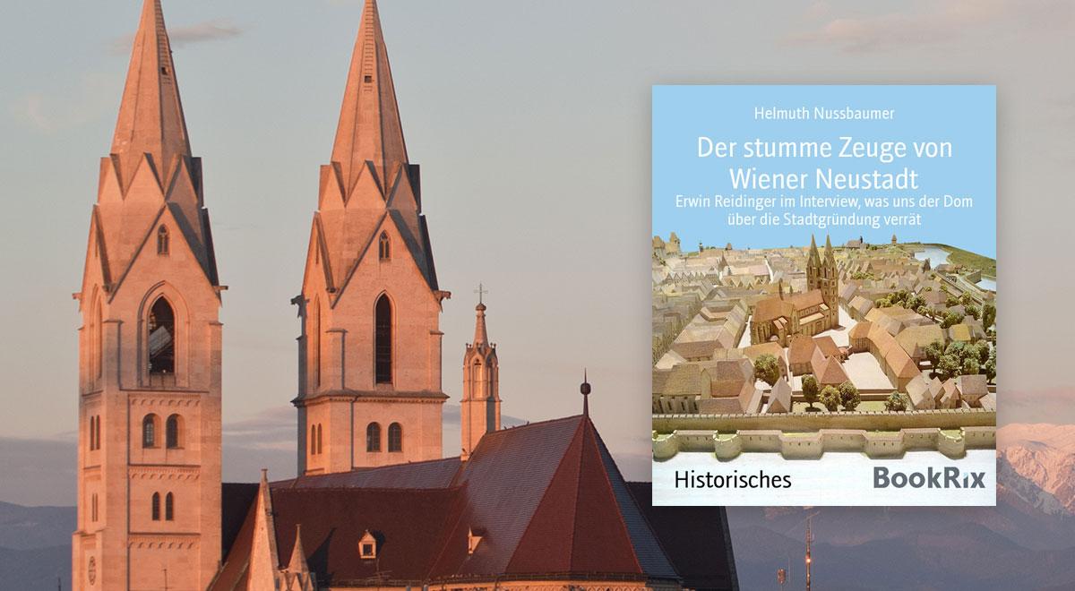 Der stumme Zeuge von Wiener Neustadt / Foto: wn24 / bookrix