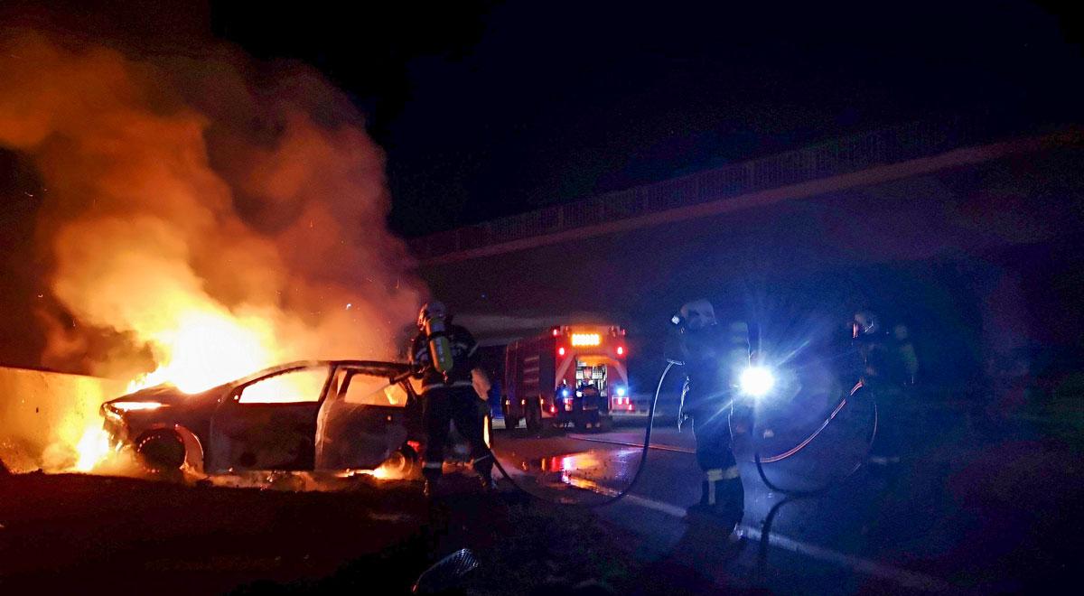 Fahrzeugbrand auf A2 / Foto: Presseteam d. FF Wr. Neustadt