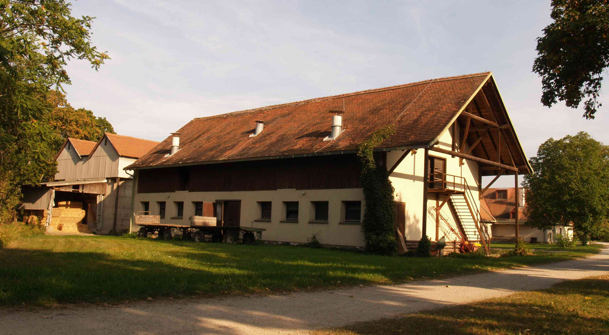 Der Fohlenhof im Akademiepark / Foto: zVg.