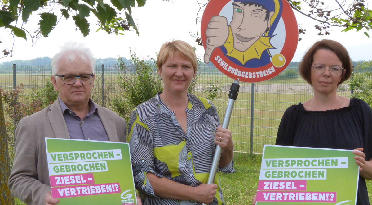 Gruene-Noe-Ziesel-Wiener-Neustadt / Foto: Die Grünen NÖ