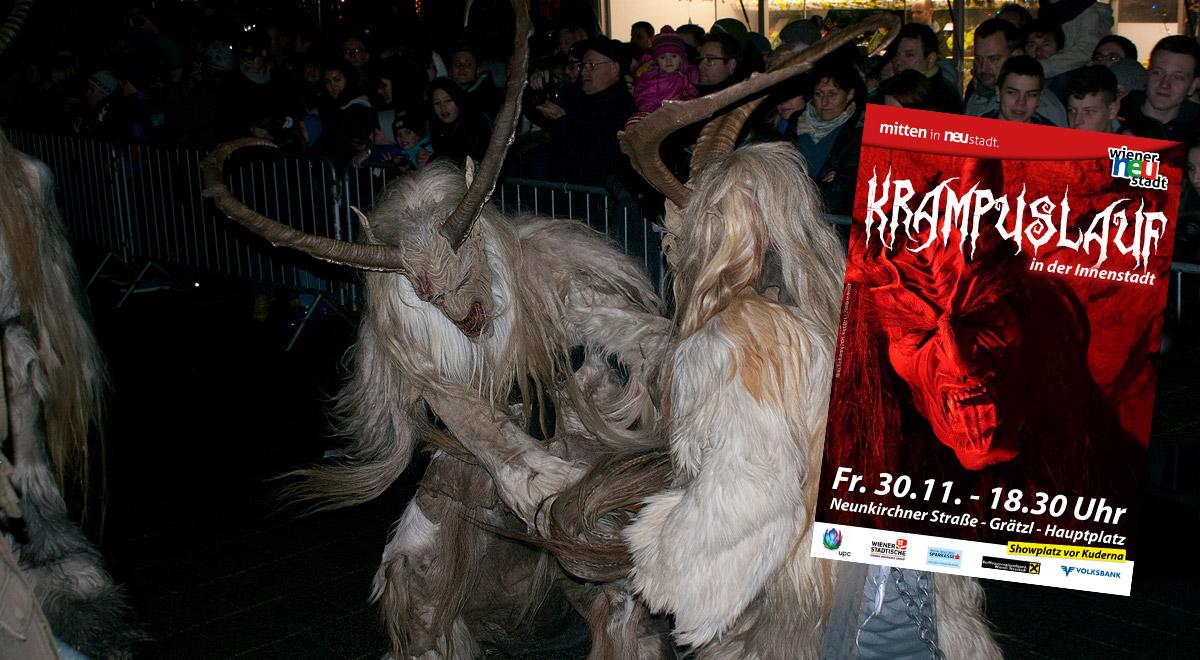 Krampuslauf in Wiener Neustadt / Foto: wn24 / Robert Mayer