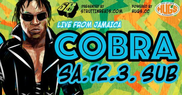Foto: Mad Cobra live