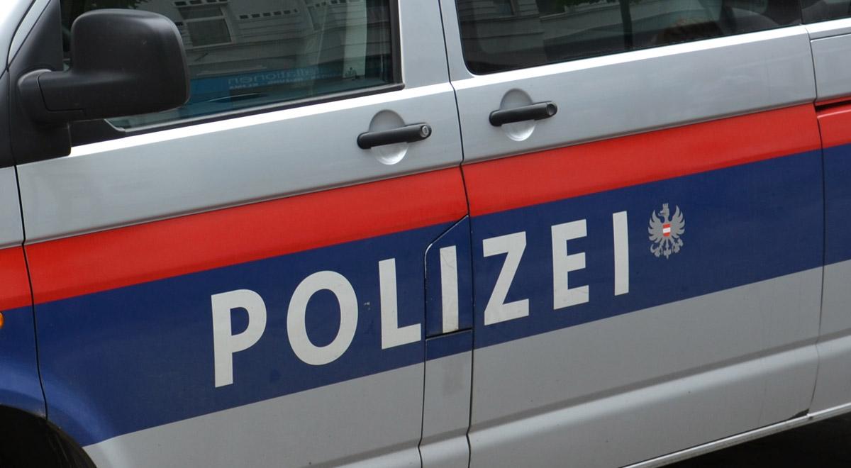 Mannschaftstransportfahrzeug Polizei / Foto: Plani (CC BY-SA 3.0)
