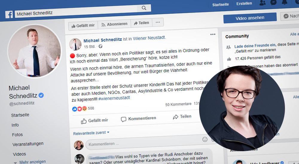 Facebook-Beiträge nach Mord / Foto: Screenshot Facebook / Grüne NÖ