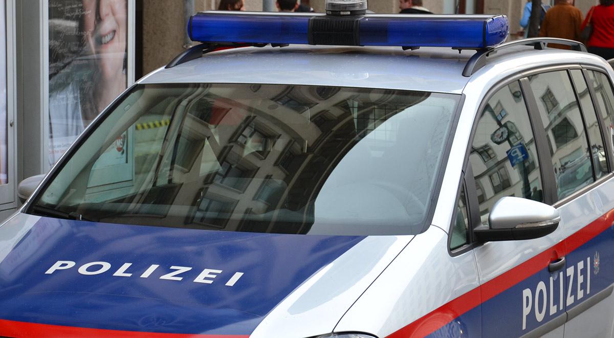 Polizeifahrzeug / Foto: Plani via Wikimedia (CC BY-SA 3.0)