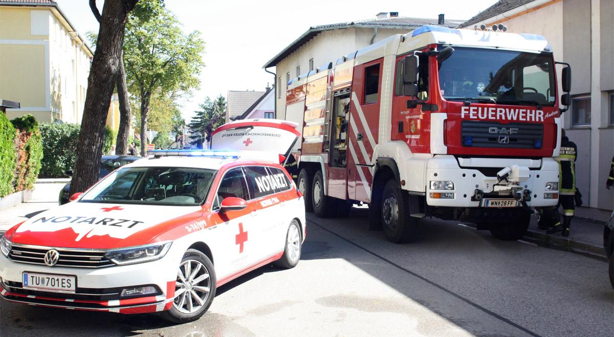 Wohnungsbrand in der Fischelkolonie / Foto: Presseteam Feuerwehr Wiener Neustadt