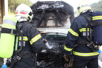 Fahrzeugbrand auf der Autobahn / Foto: Presseteam d. FF Wr. Neustadt