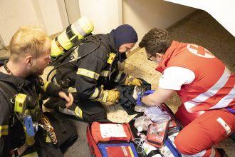 Rettung einer Katze / Foto: Presseteam ffwrn.at